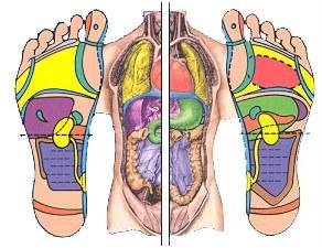 corps-pieds
